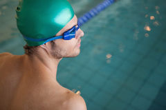 Fit swimmer by the swimming pool. At the leisure center Royalty Free Stock Images