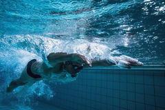 Fit swimmer training by himself. In the swimming pool at the leisure centre royalty free stock photography