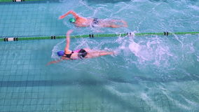 Fit swimmers racing in the pool stock video footage