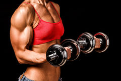 Fit woman with barbells Stock Image