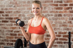 Fit woman exercising with dumbbell Royalty Free Stock Photos