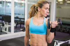Fit woman exercising with dumbbell in gym Royalty Free Stock Photography