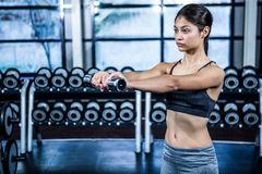Fit woman exercising with dumbbells Stock Photography