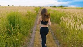 Fit Woman Jogging Exercising Running Cardio outdoor at summer field. Workout Female Runner. Rear view. Attractive woman athlete running in country jogging stock video footage