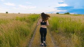 Attractive young woman athlete running in country jogging exercising enjoying healthy fitness lifestyle female runner on. Fit Woman Jogging Exercising Running stock video