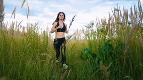 Fit Woman Jogging Exercising Running Cardio outdoor through the tall grass at summer field. Workout Female Runner. Fit Woman Jogging Exercising Running Cardio stock video