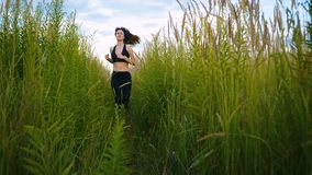 Fit Woman Jogging Exercising Running Cardio outdoor through the tall grass at summer field. Workout Female Runner. Fit Woman Jogging Exercising Running Cardio stock video footage