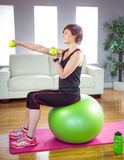Fit woman lifting dumbbell sitting on ball Royalty Free Stock Photos