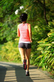 Fit woman running at park Royalty Free Stock Photos