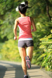 Fit woman running at park Stock Photos