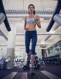 Fit woman running on the treadmill Stock Images