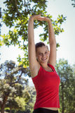 Fit woman stretching her arms Stock Photography