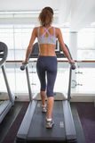 Fit woman walking on the treadmill Stock Image