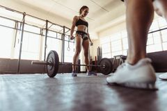 Fit woman working out with heavy weights in gym Royalty Free Stock Images