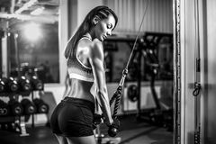 Fit woman workout triceps lifting weights in gym Stock Images