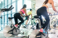 Fit women burning calories during indoor cycling class in a mode Royalty Free Stock Photography
