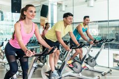 Fit women burning calories during indoor cycling class. Rear low-angle view of two fit women with an active lifestyle burning calories during indoor cycling royalty free stock photo
