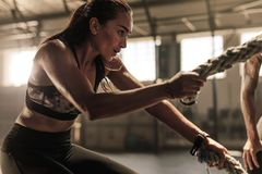 Woman doing strength training with battle ropes. Fit women using battle ropes during strength training at the gym. Athlete moving the ropes for burning fats at Stock Photography