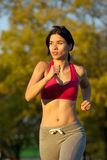 Fit young lady jogging in the park Royalty Free Stock Photos