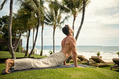 Fit young man doing the cobra pose in nature stock image