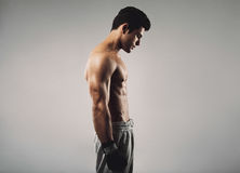 Fit young man wearing boxing gloves looking down. Side view of fit young man wearing boxing gloves looking down on grey background Royalty Free Stock Images