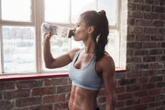 Fit young woman drinking water in the gym. Muscular woman taking break after exercise Royalty Free Stock Photos