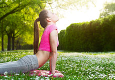 Fit young woman exercising outdoors Stock Photos