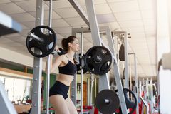Fit young woman lifting barbells looking focused, working out in gym, build up muscles with simulator, has strength training to royalty free stock photos