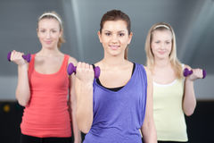 Fit young women lifting weights Royalty Free Stock Image