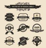 Fita ajustada dos ornamento dos elementos da decoração do vintage do vetor Imagem de Stock