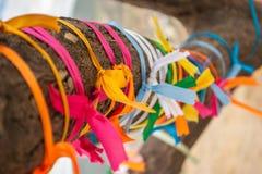 Fitas coloridas no close-up velho da árvore fita Multi-colorida do cetim amarrada a um ramo de árvore Foto com profundidade peque Imagem de Stock Royalty Free