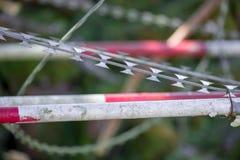 Fitas da lâmina e fundo dos polos do metal Imagem de Stock Royalty Free