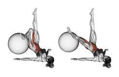 Fitball exercising. Extension of one leg on fitball. Female stock illustration