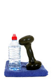 Fitness. Weights for workout, isolated on white background, reflective surface Royalty Free Stock Photography