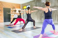 Fitness asian female group doing warm up yoga pose in row at the yoga class. Selective focus royalty free stock images