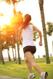 Fitness asian woman running Royalty Free Stock Photography
