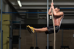 Fitness Athlete Climbing A Rope Stock Photography