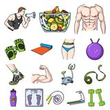 Fitness and attributes cartoon icons in set collection for design. Fitness equipment vector symbol stock web Stock Photos