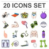 Fitness and attributes cartoon icons in set collection for design. Fitness equipment vector symbol stock web Stock Photo