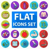 Fitness and attributes flat icons in set collection for design. Fitness equipment vector symbol stock web illustration. Stock Photos