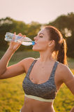 Fitness beautiful woman drinking water and sweating after exerci Royalty Free Stock Photos