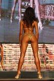 Fitness bikini model Stock Image