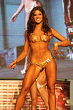Fitness bikini model Royalty Free Stock Photography