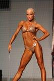 Fitness bikini model Royalty Free Stock Images