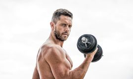 Fitness and bodybuilding sport. Gym workout concept. Dumbbell exercise gym. Muscular man exercising with dumbbell. Price stock image