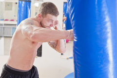 Fitness and boxing Stock Images