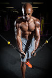 Fitness Cable Machine Weight Training Stock Photo