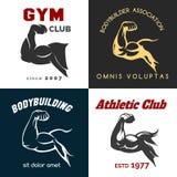 Fitness center logo set Royalty Free Stock Image