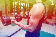 Fitness center. For a workout And muscle building Royalty Free Stock Photo
