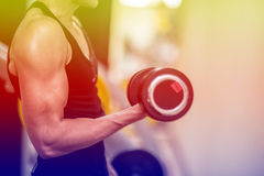 Fitness center. For a workout And muscle building Stock Image